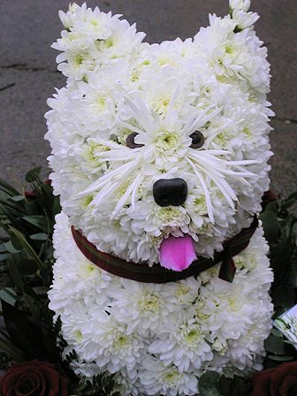 Funeral and Sympathy Flowers in Darlington, County Durham